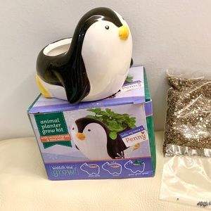 Cute penguin planter with soil and seeds